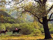 Natur und Parks in die Abruzzen