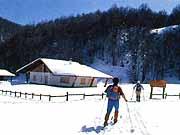 Sport in Abruzzo
