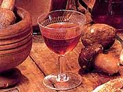 Vini Abruzzo Enologia