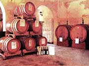 Wein aus der Abruzzen