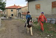 Agriturismo Al Monte Bagno di Romagna