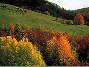 Natura e parchi in Emilia Romagna