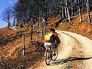 Sport in der Emilia Romagna